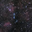 NGC6914 - One of many Cygnus Gems,                                seigell