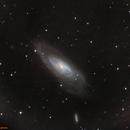 M106 galaxy & NGC 4217,                                jon nicholls