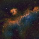 IC 2177, The Seagull Nebula, SHO,  17.3 hrs,                                riot1013