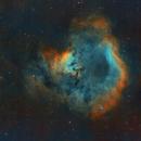NGC7822 & Little Rosette Nebulae,                                Carastro