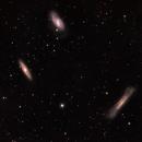 M65, M66 and NGC 3628,                                Nigel
