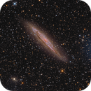 NGC4945,                                Patrick Dufour