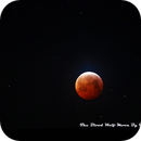 The Blood Wolf Moon,                                Tam Rich
