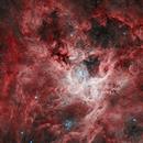 The Tarantula Nebula NGC 2070 - HST data,                                Wissam Ayoub