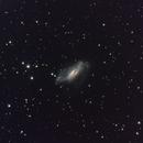 NGC 2146,                                Roberto Marinoni