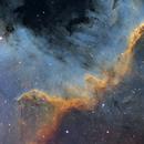 The Cygnus Wall,                                Erik Pirtala
