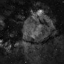 Fishhead Nebula,                                KuriousGeorge