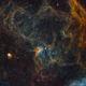 IC417 - NGC1931,                                Philippe BERNHARD