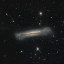 NGC 3628,                                Patrick Chevalley