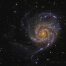 M101 The Pinwheel Galaxy,                                Steve Furlong