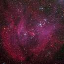 IC 2948 - Running Chicken Nebula,                                Miles Zhou