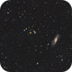 M106- Widefield,                                Chris R White