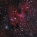 Sh2-155 The Cave Nebula,                                Dave Boddington