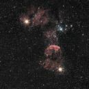 Jellyfish nebula, IC443,                                Julio Hechavarria