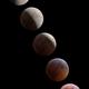 Lunar eclipse - Visual simulation,                                Victor Van Puyenb...