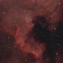 NGC 7000 - The North America Nebula,                                Jason Doyle