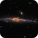 NGC 4631, The Whale Galaxy,                                Ruben Barbosa