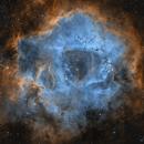 The Rosette Nebula in the Hubble Palette,                                Alex Roberts