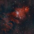 NGC2264 (The Christmas Tree Cluster),                                rupeshvarghese