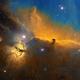 Horse Head Nebula SHO,                                regis83