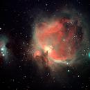 M42,                                agostinognasso