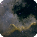 NGC 7000,                                Anthony Husson