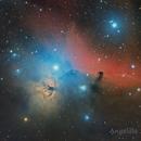 NGC2024 Flame Nebula & Barnard33 Horsehead Nebula,                                Angelillo