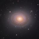 NGC 2775,                                Adam Block