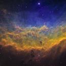 California Nebula,                                Adam Landefeld