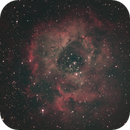 Rosette Nebula,                                David Wright