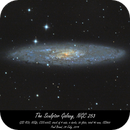 The Sculptor Galaxy, NGC 253,                                Paul Brand