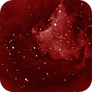 Lower portion of the N America Nebula,                                Connolly33