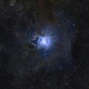 NGC 7023 Iris Nebula,                                Lynn van Rooijen