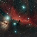 Horsehead Nebula (IG 434),                                Douglas Thomas