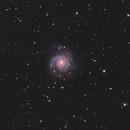 M74,                                pmneo