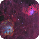 Flaming Star Nebula, Tadpole Nebula and friends,                                equinoxx