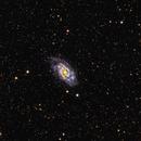 NGC 2403,                                Ray Blais