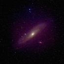 Andromeda - January 2021,                                Sean