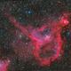 IC1805,                                sungang