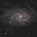 M33,                                Ed Defesche