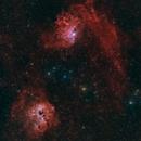 Flaming Star Widefield,                                Stephan Linhart