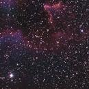 IC63 cropped,                                John