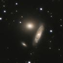 NGC2872 2873 2874 Group or Arp 307,                                Riedl Rudolf