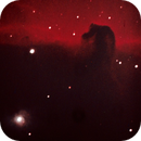 B33 - the horsehead nebula,                                Tom Gray