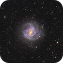 M83 The Southern Pinwheel,                                Ezequiel