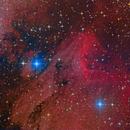 The Pelican Nebula,                                Michael Kalika