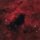 Barnard 343,                                Gary Imm