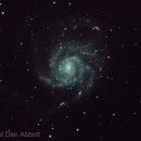 M101,                                Dan Abbott
