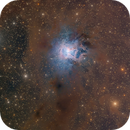 The Iris Nebula,                                Eric Coles (coles44)