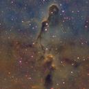 IC 1396,                                Petar_Babic